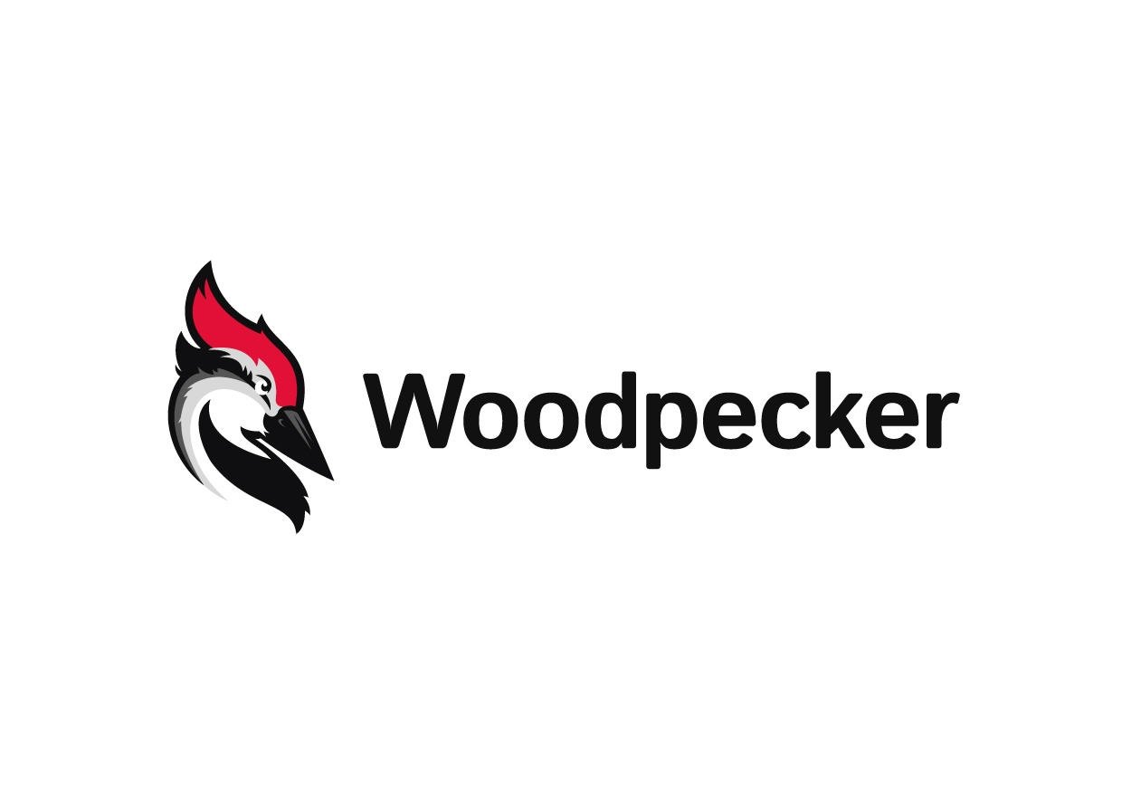 How We Came Up with the Name & Logo for Woodpecker.co